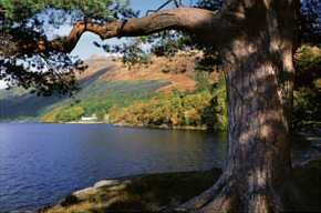 West Highland Way, at Rowardennon on Loch Lomond in the National park